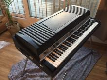 Rhodes mark I custom